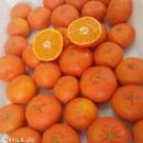 Mandarina sin semillas extradulces