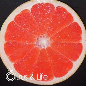Rosa Grapefruit ~ Citrus & Life