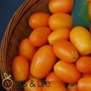 Kumquat Nagami