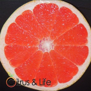 Rosa Grapefruit ~ Citrus & Life