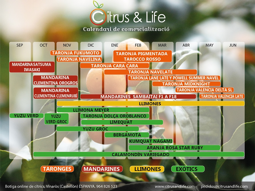 Citrus&Life - Calendario de comercialización